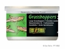 Exo Terra Wild Flat Head Grasshoppers, 1.2 oz, From Exo Terra