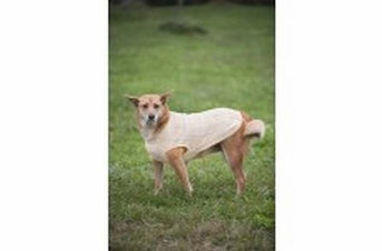 Fashion Pet Donegal Cable Sweater Cream Large