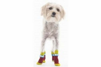 Fashion Pet Snazzy Socks Red Bone Large