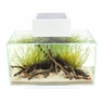 Fluval Edge 6 Gal with 21-LED Light, White, From Hagen