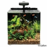 Aqueon AQE17102 Evolve Desk Top Aquariums Tank, 8-Gallon