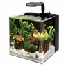 Aqueon AQE17101 Evolve Desk Top Aquariums Tank, 4-Gallon