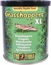 Hagen Exo Terra Canned Wild Flat Head Grasshoppers, Reptile Food Insects, 2.4 oz From Hagen Exoterra