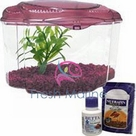 Hagen Marina Betta Pals Aquarium Kits, Burgundy