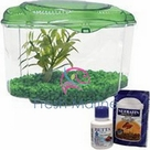 Hagen Marina Betta Pals Aquarium Kits, Green