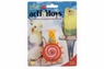JW Pet Activitoy Hypno Wheel
