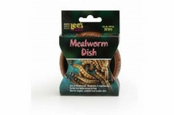 Lee's Meal Worm Curved Dish
