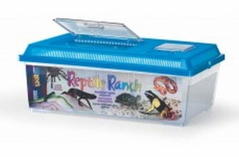 Lee's Reptile Ranch Rectangle with Lid Large