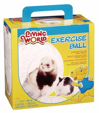 Living World Exercise Ball, Large, From Hagen