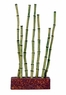 Marina Betta Kit Bamboo Shoots Ornament, From Hagen