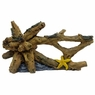 Marina Ornament w/Starfish, Large, From Hagen