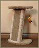 North American Pet Corner scratcher with cardboard insert