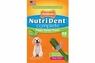 Nylabone Nutri Dent Puppy Bacon Small 28ct