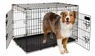 Petmate 34-Inch 2-Door Training Retreats Wire Kennel for Dogs, 50 to 70-Pound