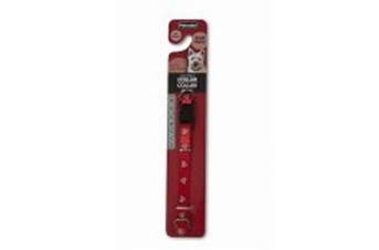 Aspen Pet Reflective Paw Adjustable Dog Collar Red 3 8 X 8-14in