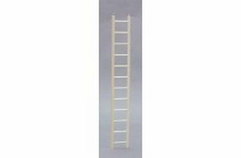 Bird Brainers Parakeet Ladder 24in