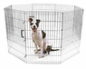 Precision Exercise Pen Silver SXP 36in
