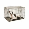 Precision Pet Products Precision Pet ProValu Great Crate Double Door Dog Crate - Black, Wire, L