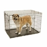 Precision Pet ProValu2 48 by 30 by 32-Inch 2-Door Crate with Lock System, Size 6000, Black