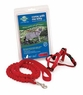 Premier Come With Me Kitty Harness & Bungee Leash Large Red