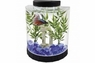 Tetra LED Half Moon Betta Kit 1gal