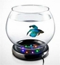 Wavepoint Fish Bowl w/LED Base Kit 1/2 gal