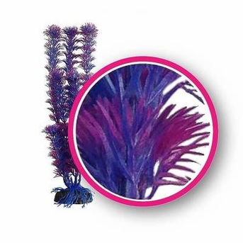 Weco Dream Series Fuschia Fern 9in