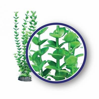 Weco Freshwater Series Lime Bacopa 18in
