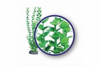 Weco Freshwater Series Lime Bacopa 9in