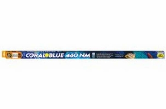 Zoo Med Coral Blue 460 NM T5 HO Lamp 46in
