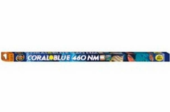 Zoo Med Coral Blue 460 NM T8 Lamp 24in