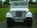 Kevin & Joan Fitzgerald, Tipperary Ireland, Jeep CJ6