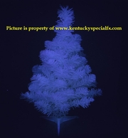 Blue Glow in the Dark Christmas Tree Decoration Magic Glowing X-mas Spruce