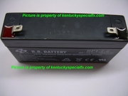 Halloween Prop 6 Volt B.B Battery 1.2Ah for small animatronics