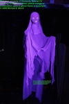 Pro Haunted House Blacklight Purple Lady Halloween Ghost Prop