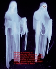 REAL White Hanging Halloween Ghost Decoration Prop