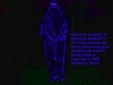 Scary Black Blue Hooded Black Light Skeleton Ghost Prop Floating Hanging