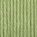 Bernat Satin Yarn - Soft Fern