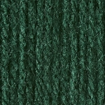 Bernat Super Value Solid Yarn - Deep Sea Green