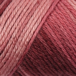Caron Simply Soft Ombre Yarn 4 oz - Rosewood (Clearance)