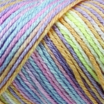 Caron Simply Soft Paints Yarn 5 oz - Baby Brights
