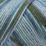 Caron Simply Soft Paints Yarn 5 oz - Spring Brook