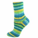 Premier Wool Free Sock Yarn - Oasis