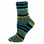 Premier Wool Free Sock Yarn - Rain Forest
