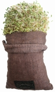 SPROUT BAG (HEMP FIBER) - 1 Bag - OUT OF STOCK