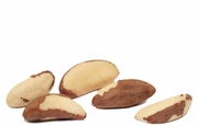 Organic SHELLED BRAZIL NUTS (raw) - 2 LBS