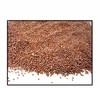 Organic BROWN MUSTARD SEED (best for sprouting) - 2 LBS