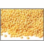 Organic HULLED MILLET - 2 LBS