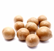 Organic INSHELL MACADAMIAS - 2 LBS - <font color=red>Overstock Clearance</font>