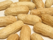 Organic INSHELL PEANUTS - 2 LBS - OUT OF STOCK